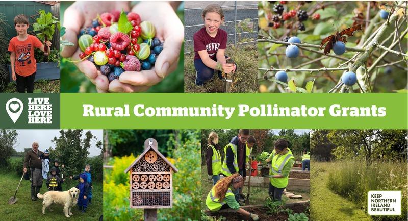 Pollinator Project Ideas